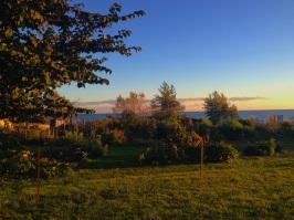 st josephs community garden